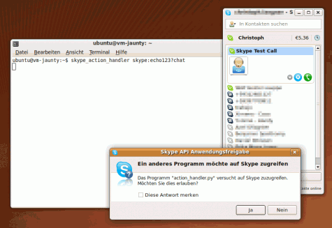 Dem skype-action-handler erlauben auf die Skype-API zuzugreifen