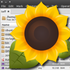 Sunflower File Manager, ein Dateimanager mit zwei Spalten und vielen Funk