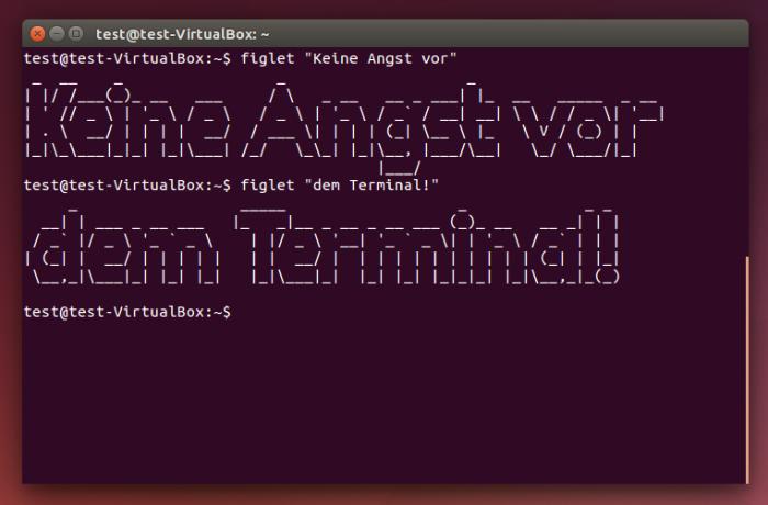 Du arbeitest mit Linux, hab bitte keine Angst vor dem Teriminal!