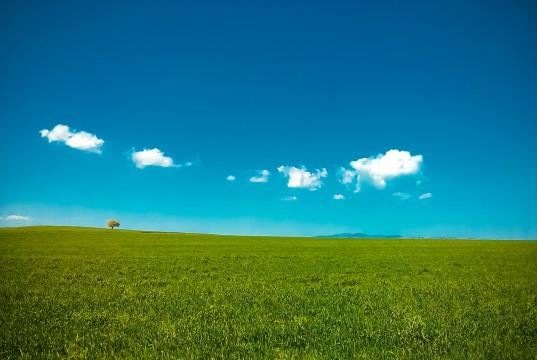 Windows Landschaft
