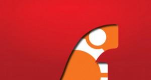 Troubleshooting Adobe Flash in Ubuntu