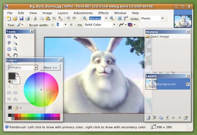 Paint Mono unter Ubuntu 9.04