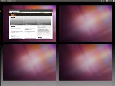 Ubuntu 11.04 Natty Virtuelle Desktops