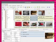 XnViewMP für Linux