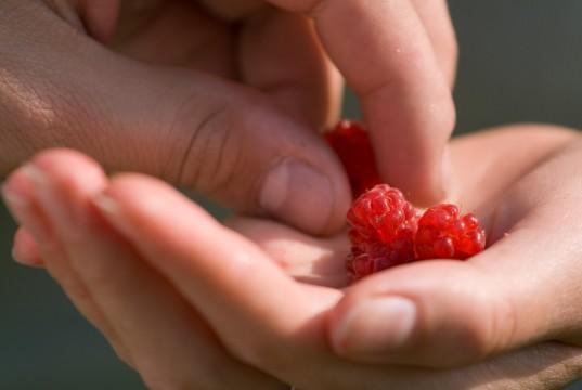 Raspberry Hand