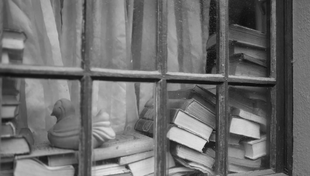 Bücher im Fenster