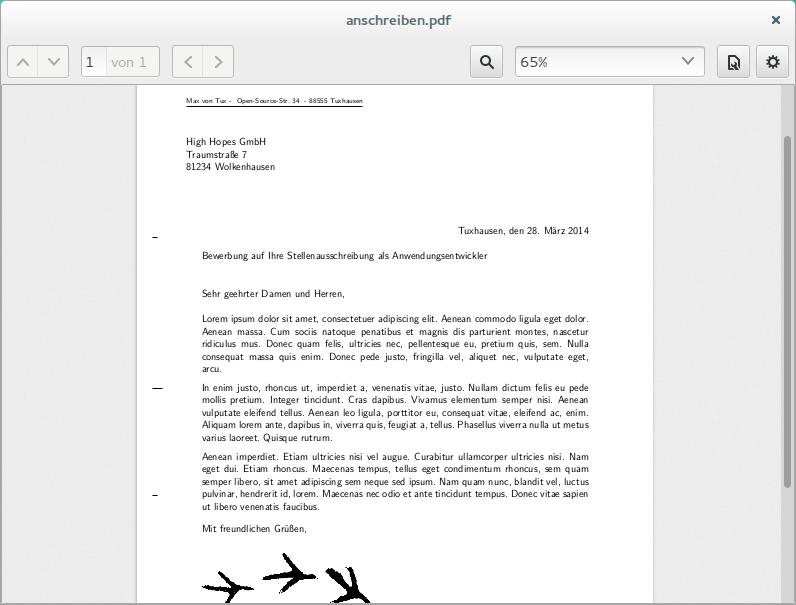 fr das anschreiben eurer bewerbung knnt ihr euch bei den zahlreichen brief vorlagen bedienen - Amazon Bewerbung