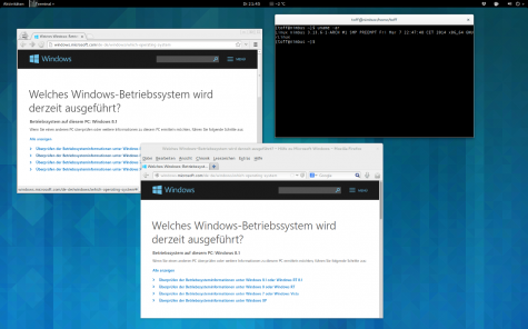 Microsoft erkennt Linux als Windows 8.1
