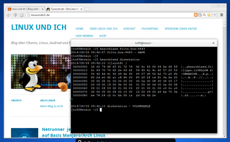 Mit der Heartbleed-Terminal-Checker lassen sich auch Systeme im lokalen Netzwerk prüfen.
