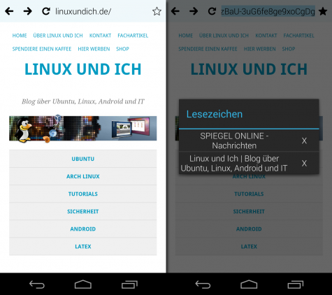 Der Lucid-Browser bietet nicht viele Funktionen, baut dafür Webseiten extrem flink auf.