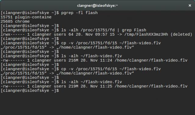 Flash-Videos mit Linux-Bordwerkzeugen auf die Festplatte herunterladen.