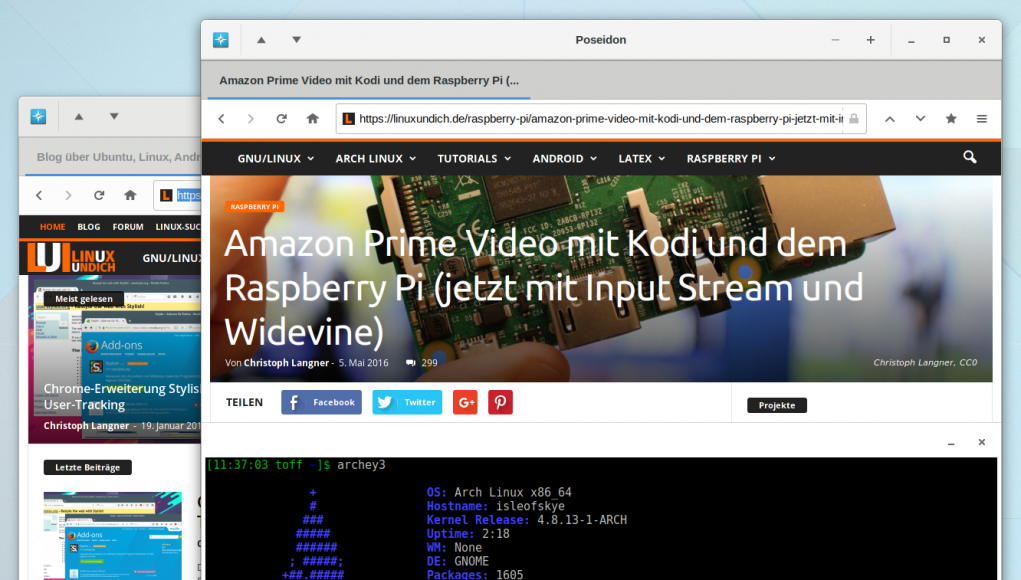 Poseidon linux browser mit adblocker noscript und gtk3 Linux browser