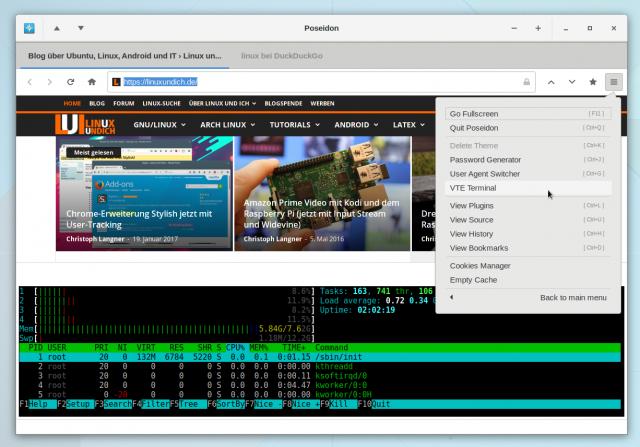 Poseidon mit Terminal im Browserfenster